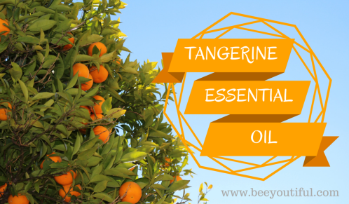 Tangerine Essential Oil from Beeyoutiful.com
