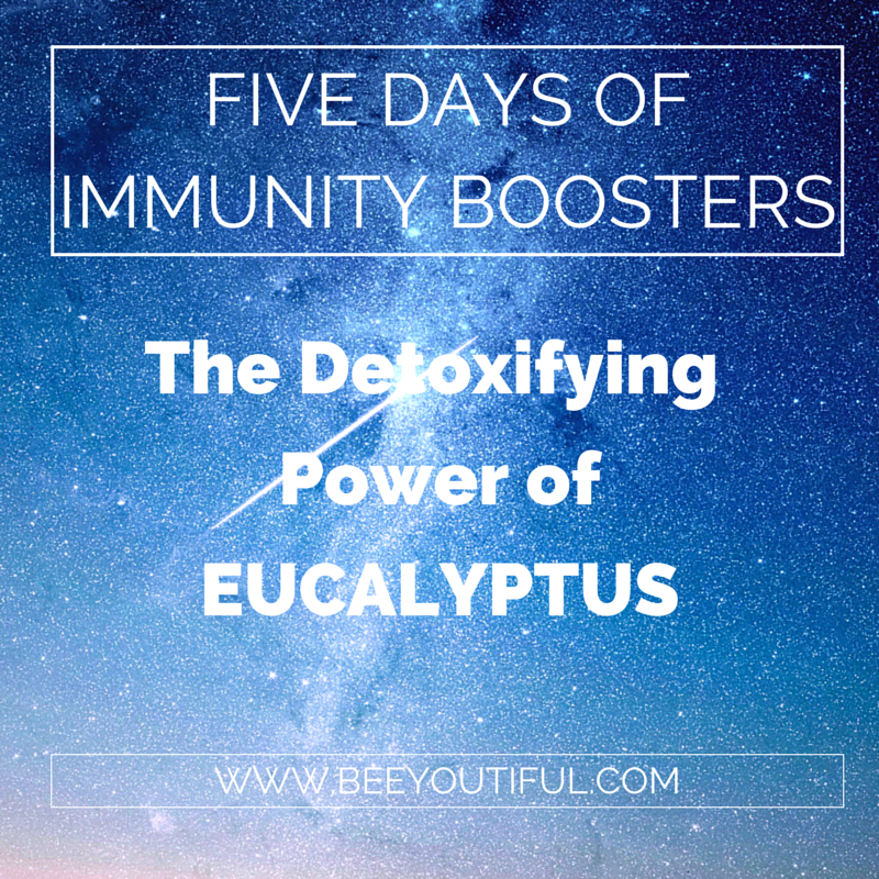 Five Days of Immunity Boosters: The Detoxifying Power of Eucalyptus