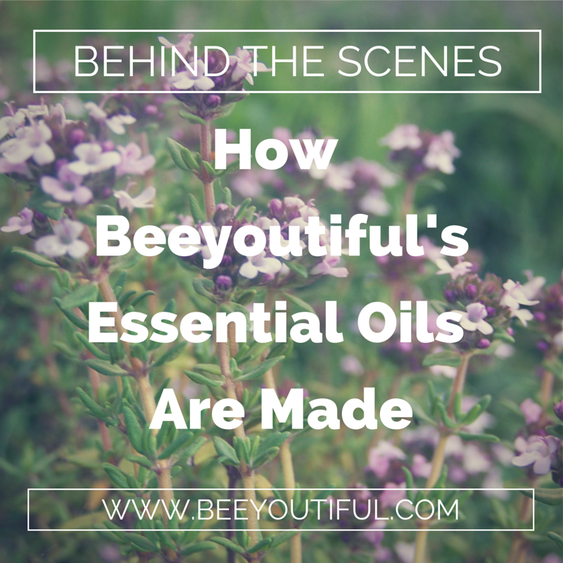 How Beeyoutiful's Essential Oils Are Made