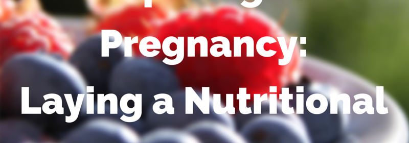 Preparing for Pregnancy: Laying a Nutiritional Foundation