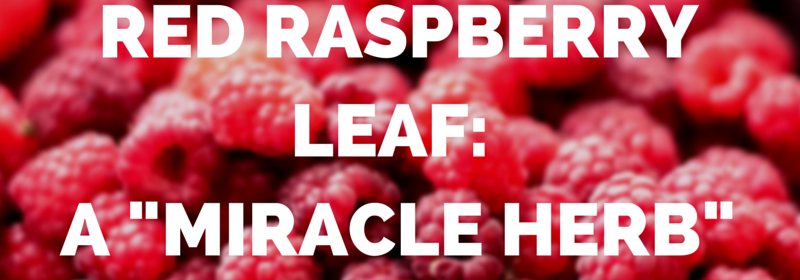 "Red Raspberry Leaf: A ""Miracle Herb"" For Women from Beeyoutiful.com"