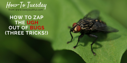 How To Zap the Ugh Out of Bugs (Three Tricks!) from Beeyoutiful.com
