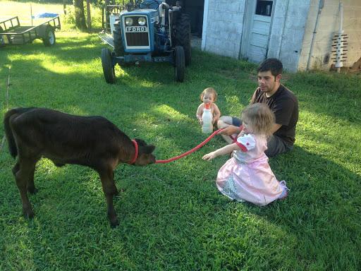 2015_August_farm1