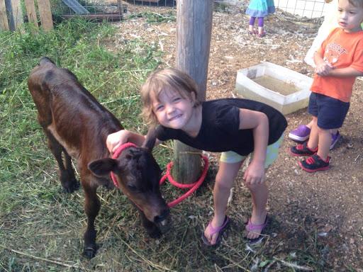2015_August_farm2