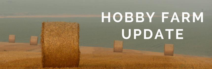 hobby farm update from Beeyoutiful.com